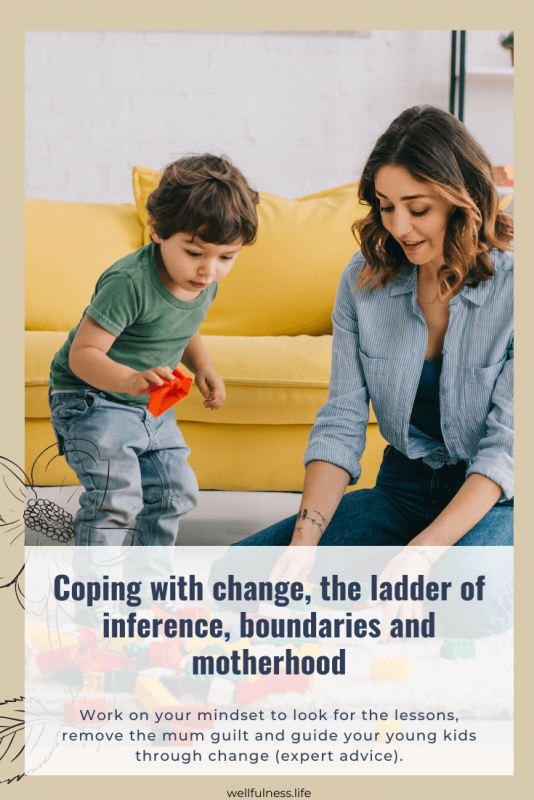 Coping with change, the ladder of inference, boundaries and motherhood